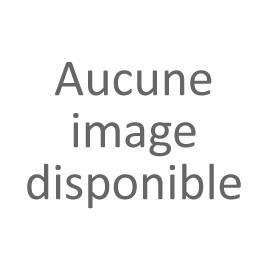 JONC CHROME TOUR DE TOIT BERLINE